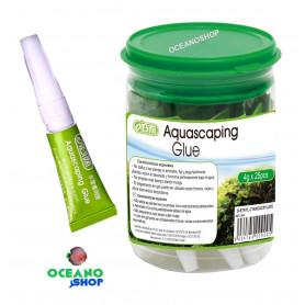 Pegamento para musgos y plantas