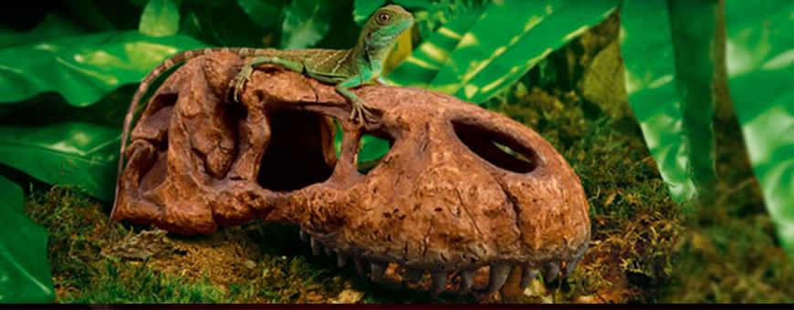 Decoración para reptiles